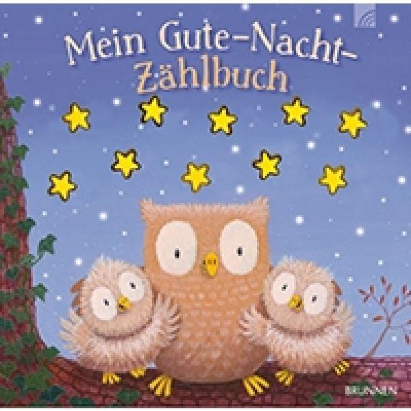 Mein Gute-Nacht-Zählbuch
