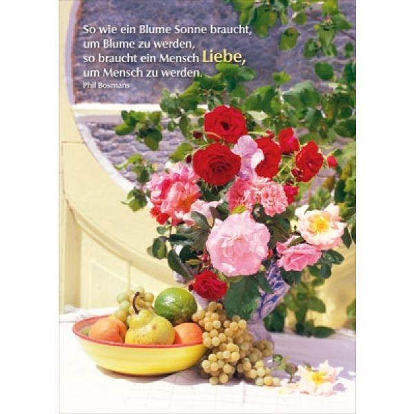 Postkarten: So wie eine Blume Sonne braucht, 4 Stück