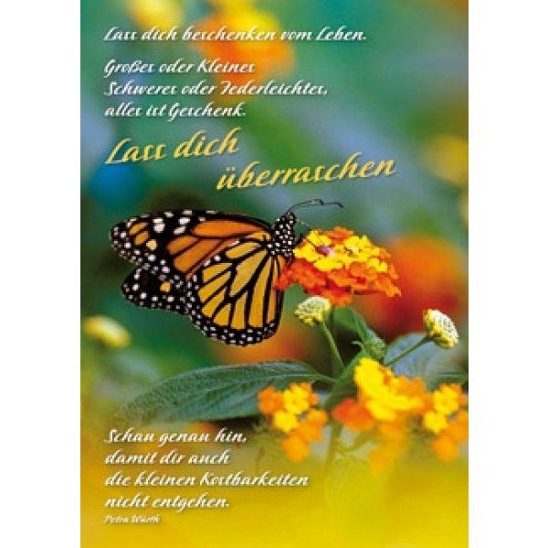 Postkarten: Lass dich beschenken vom Leben, 4 Stück