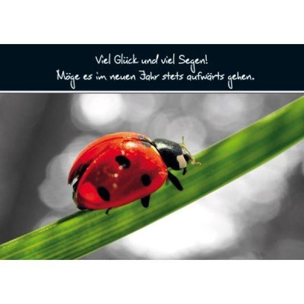Postkarten: Viel Glück und viel Segen, 12 Stück