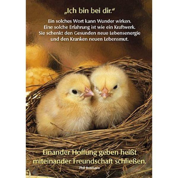 Postkarten: Ich bin bei dir, 12 Stück