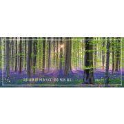 Metallschild - Wald