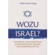 Wozu Israel?