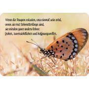 Postkarte - Wenn die Raupen wüssten....