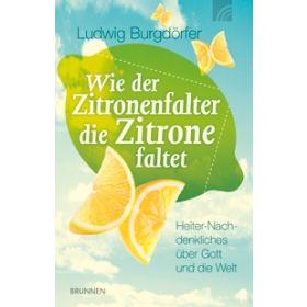 Wie der Zitronenfalter die Zitrone faltet