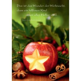 """Faltkarte """"Das ist das Wunder der Weihnacht"""" - 5 Stück"""