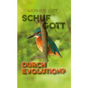 Schuf Gott durch Evolution?