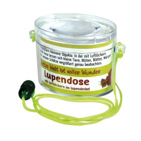 Lupendose oval - neon grün