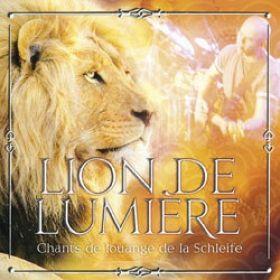 Lion de lumière