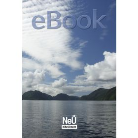 NeÜ Bibel.heute, Motiv Fjord