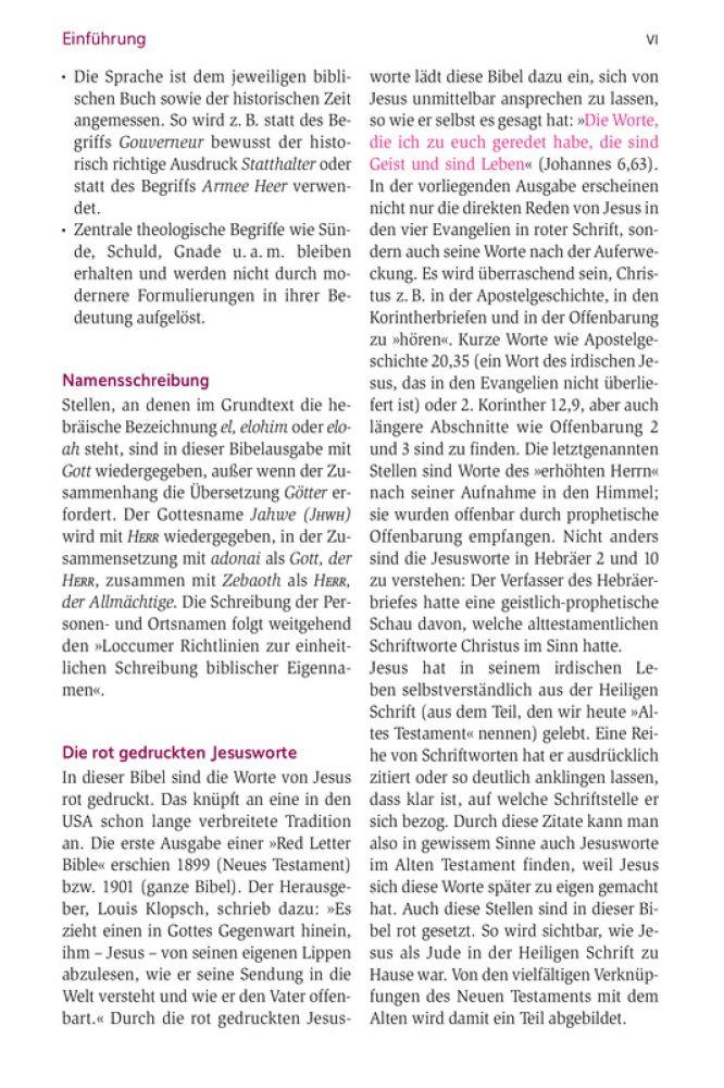 Niedlich Junge Farbseiten Ideen - Dokumentationsvorlage Beispiel ...