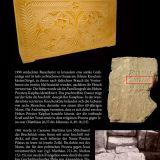 Elberfelder Bibel mit Erklärungen - Kunstleder, mit Reißverschluss
