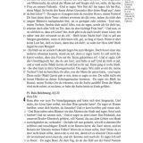 Scofield-Bibel - Leder